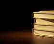 Partiové knihy